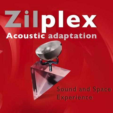 Zilplex.indd